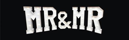Mr & Mr Light up letters